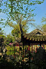 蘇州 留園 春景The Lingering garden, spring, Suzhou China, DSC_8005_1