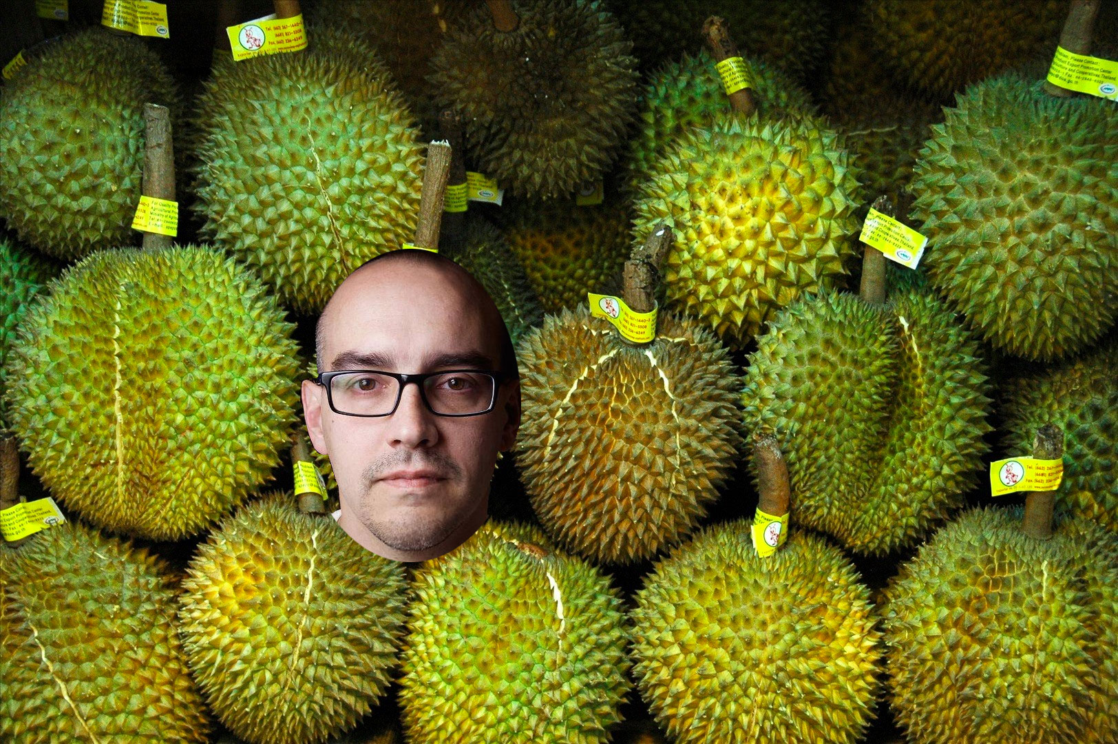 dave mcclure 500 durians
