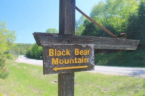 Black Bear Mountain Sign