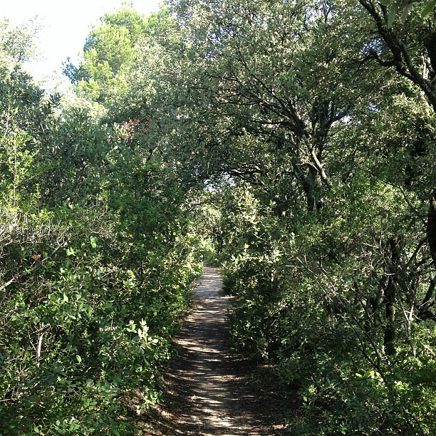 Provence #trailrunning