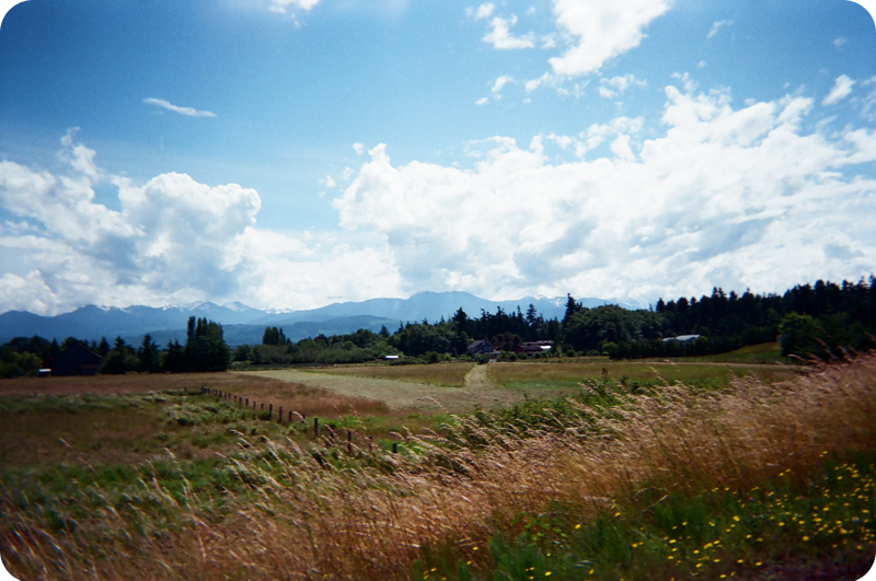 {disposable camera} beach bound | olympic mountains