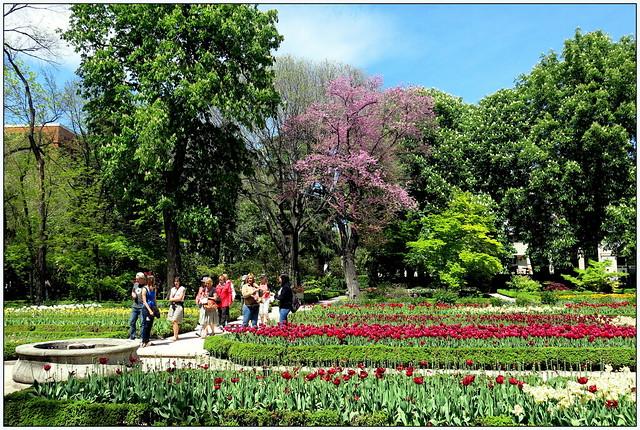 Un jard n en primavera jard n bot nico de madrid en for Jardines en primavera fotos