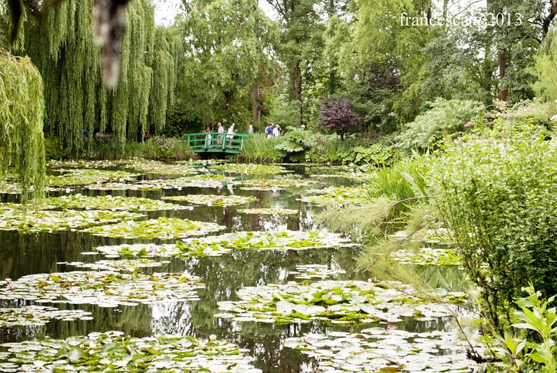 Monet's garden/3