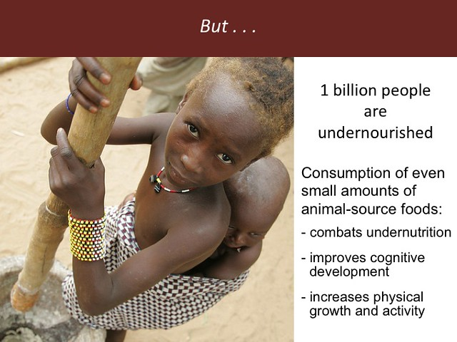 Feeding the World in 2050: Slide 27
