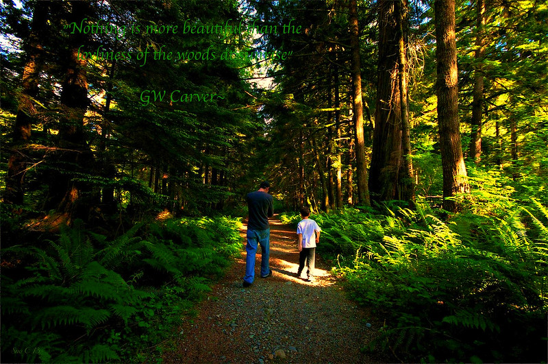 Father and Son taking a hike_Fotor