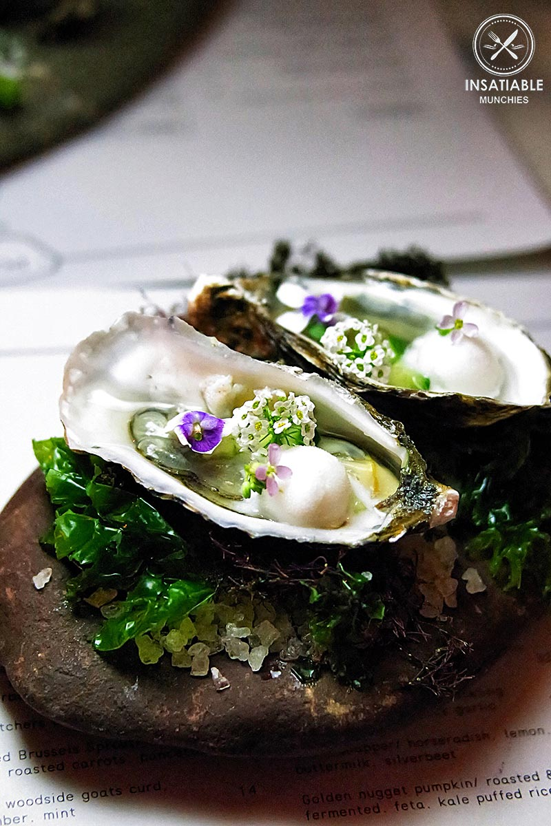 Oysters, Gin and Tonic Sorbet, Cucumber, Foraged Violets and Sea Lettuce