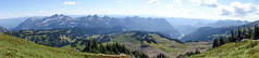 Mount_Rainier_National_Park-96.jpg