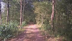 Sur l'ancienne ligne de la Possonnière à Niort(61) - Photo of Fenioux