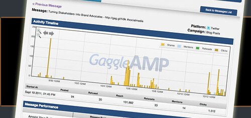 Gaggle Amp Measurements