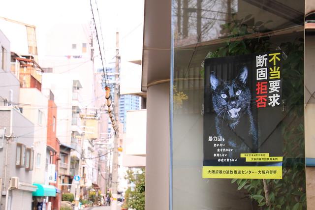 黒猫ヤクザ 1