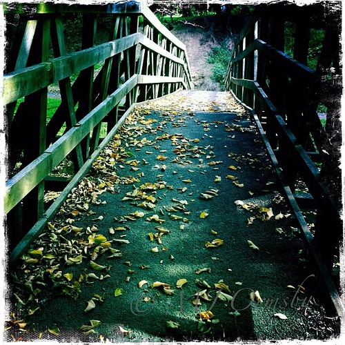 Cross that bridge #lifeinlofi #heart #imagery #crossthatbridge