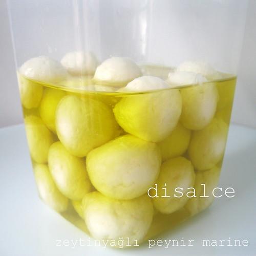 zeytinyağlı marine peynir