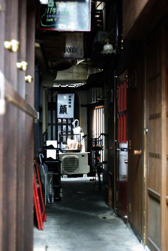 Japanese restaurant in the back alley