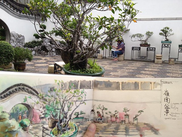Sketching my Friend with the Bonsai  嶺南盆景