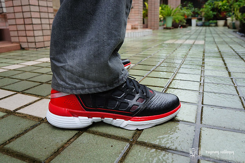 Adidas_adizeroshadow_17