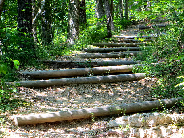 Log Steps to Stop Erosion