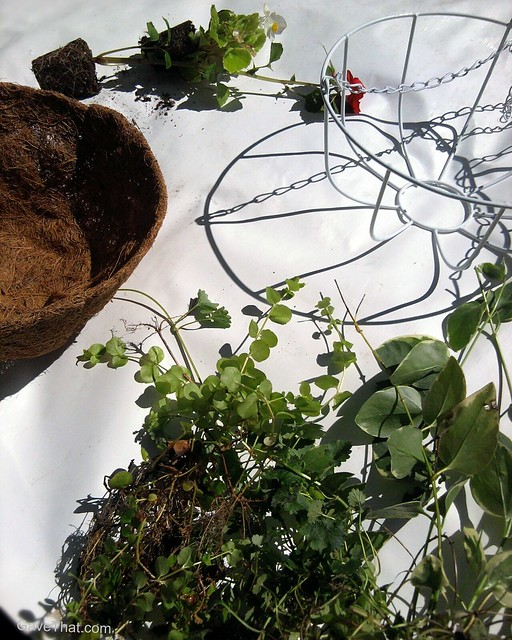 Materials needed to make your own floral hanging basket gifts