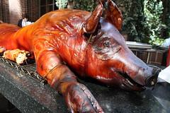 suckling pig, lechon, meat, pig roast, food, cuisine,