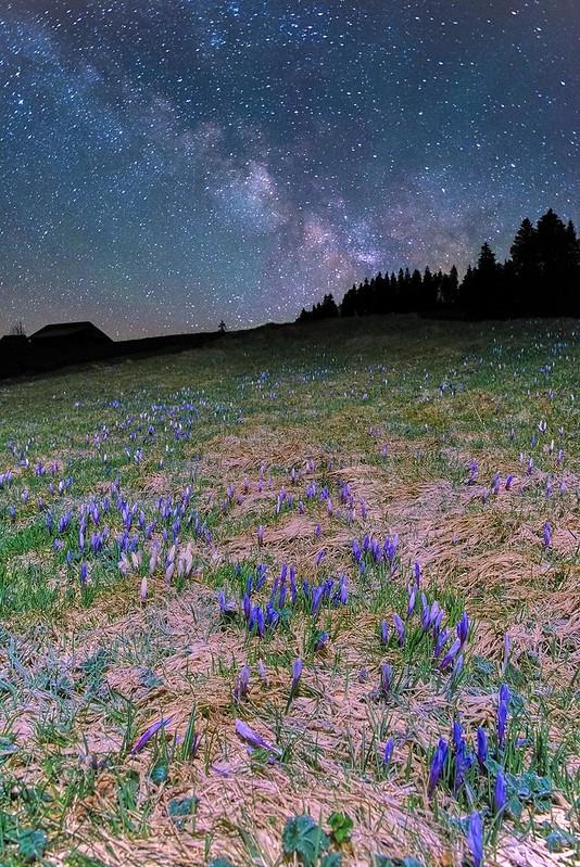 Sleeping under the stars - Rämisgummen