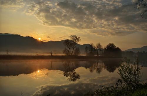 morning trees italy mist alberi clouds sunrise river nikon italia nuvole cloudy alba fiume foggy round nebbia thegimp wetland adda mattina brivio airuno nikonflickraward d5100 luminositymasks perpetualcanon