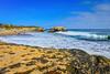 Tide Pools at Natural Bridges State Beach - Santa Cruz CA