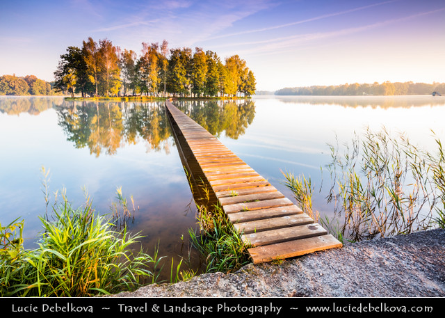 Czech Republic - South Bohemia - Třeboňsko - Lonely island in the middle of pond during misty Sunrise