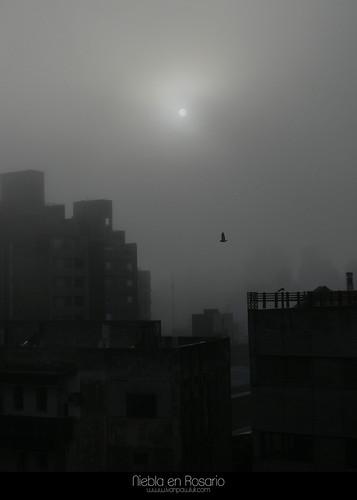 Niebla en Rosario by Ivan Pawluk