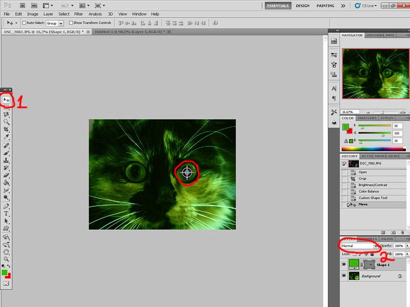 Зеленая виртуальная кошка 7054283135_79e517cb85_c