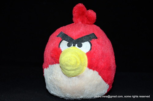 126: (angry) bird by pvera