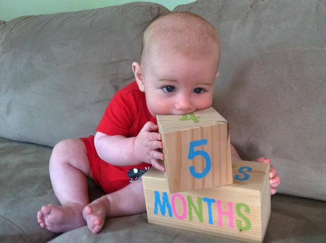 05 months-5