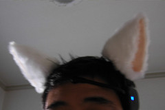 Necomimi Brainwave Cat Ears Are Just Weird