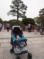 Kamakura Hachimangu