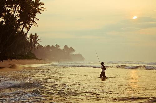 ocean travel island asia adventure srilanka ceylon weligama stickfishermen thalpe srilanka876222