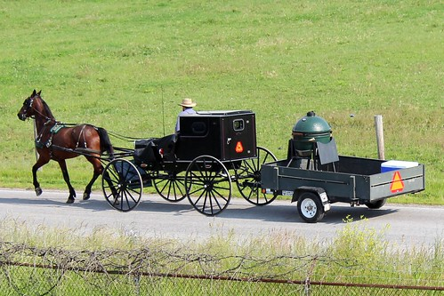 IMG_0163b_Amish_Buggy_Pulling_Wagon_to_Worksite