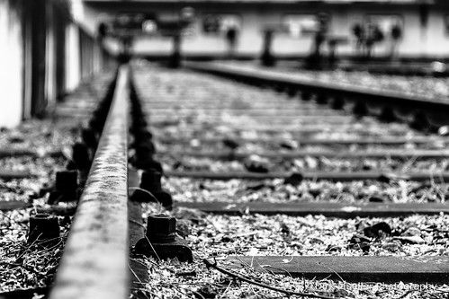 Along the Line by Dirk Mueller Photography
