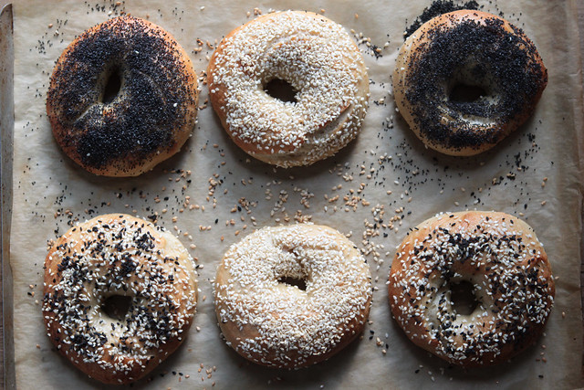 Homemade Bagels from Food52