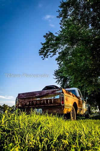 blue sunset chevrolet 1969 field truck rust northcarolina chevy rusting bellwood
