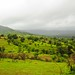 Varandha_Ghat-18
