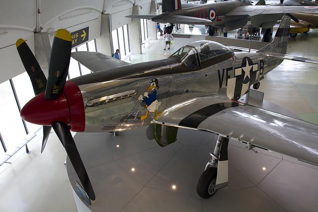 USAF P-51D
