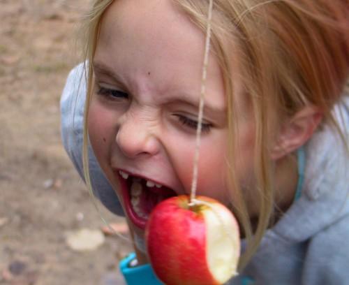 Determined Fruit