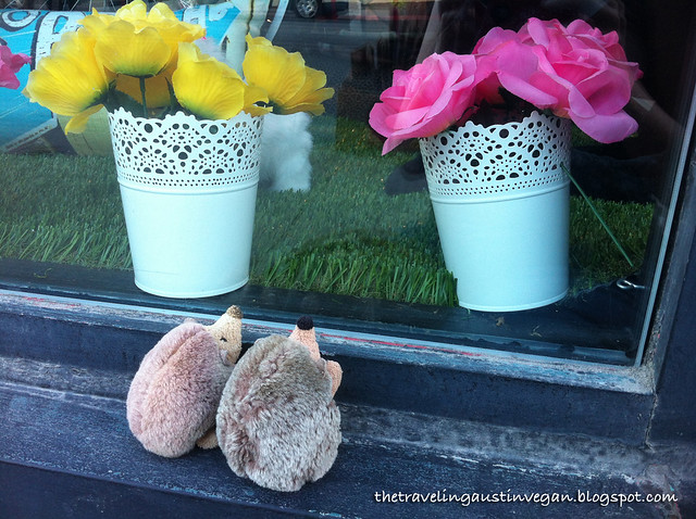 Windowshopping Hedgehogs