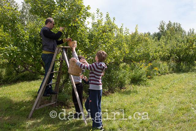 渥太华苹果园的全家福