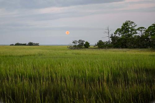moon other flickr southcarolina places huntingisland sthelensisland