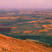 Palouse Warmth by Ryan McGinty