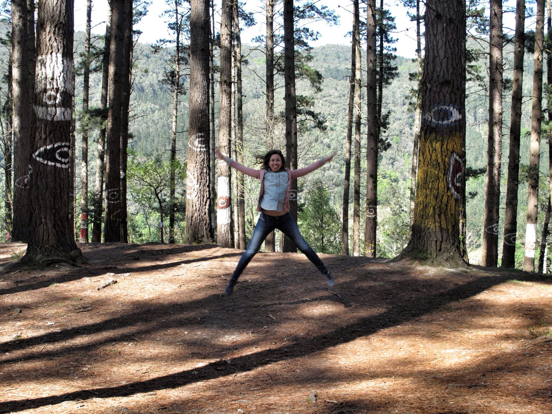 bosque de oma_la niña de rosa_reharq
