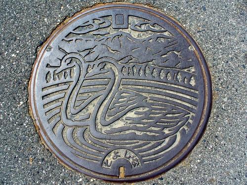 Toyoshina Nagano, manhole cover 2(長野県豊科町のマンホール2)