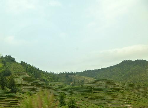 Fujian-Tulous-Hakkas-Tour-Route (61)