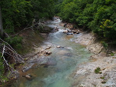 stream, valley, rapid, river, creek, body of water, watercourse, ravine, wilderness, jungle, stream bed,