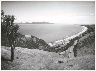 Kāpiti Island with Old Paekakariki Road in the foreground (1965)