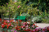 Claude Monet's garden at Giverny, France